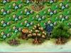 granatapfelbaume-und-pistazienbaume-2221ad8695ca8959deae3c06ff085746ed3c315b