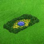 brasilienflagge