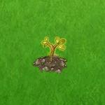 gluecksbaum